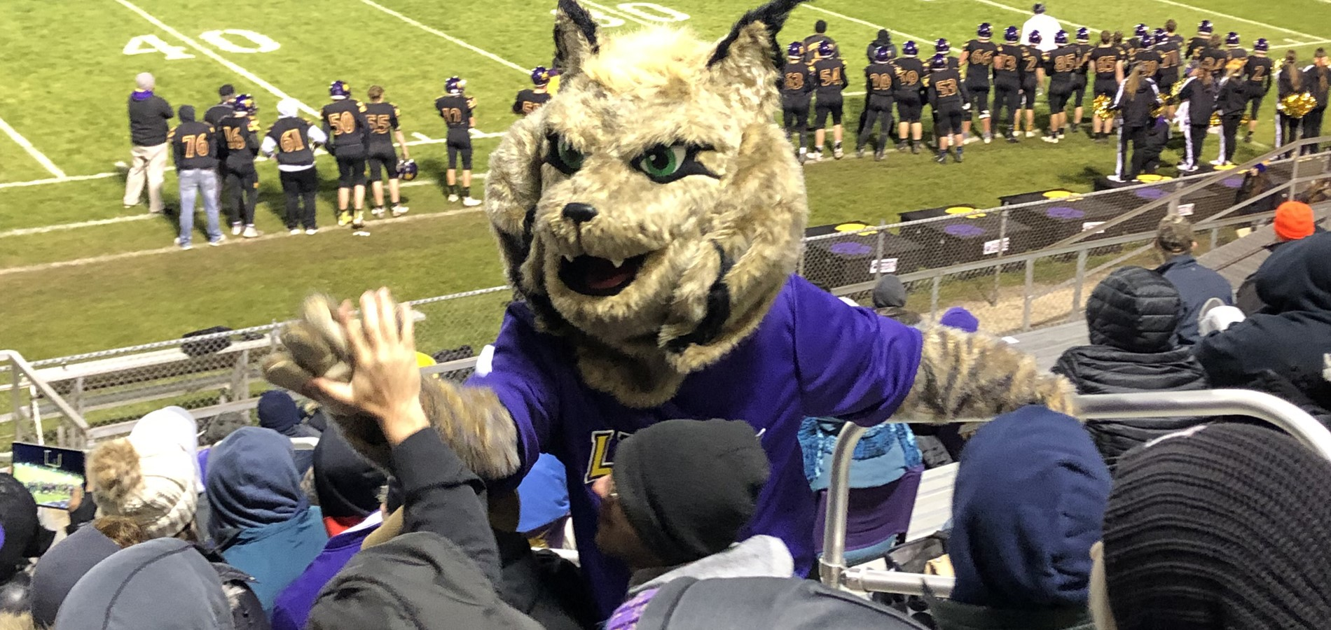 Picture of the Lynx Mascot in the crowd at a football game